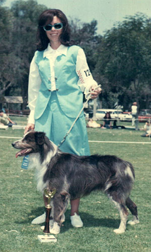 J Bar D Red Chief (Rowes Warrior Bow x Porters [Rowe] Yakima Blue Squaw) with Sharon Rowe won Novice Dog (Corona, California, 1970).