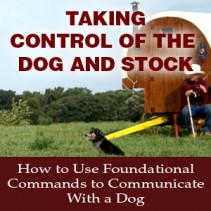 Taking Control of the Dog and Stock